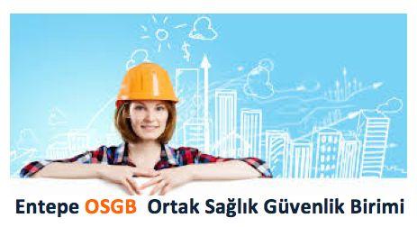 istanbul iş güvenliği hizmetleri